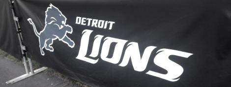 lionscamp